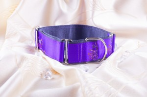 Martingale galgo band Purple Queen