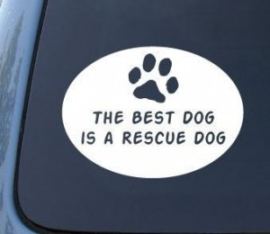 sticker auto the best dog is a rescue dog