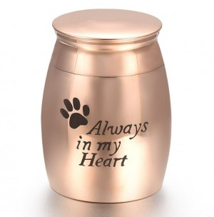 mini urn hond RVS goud rose